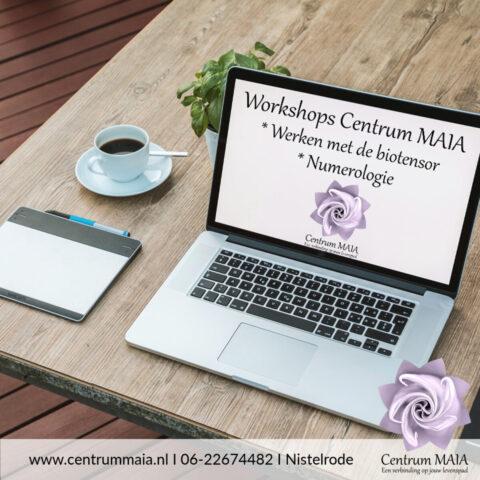 Workshops voor thuis